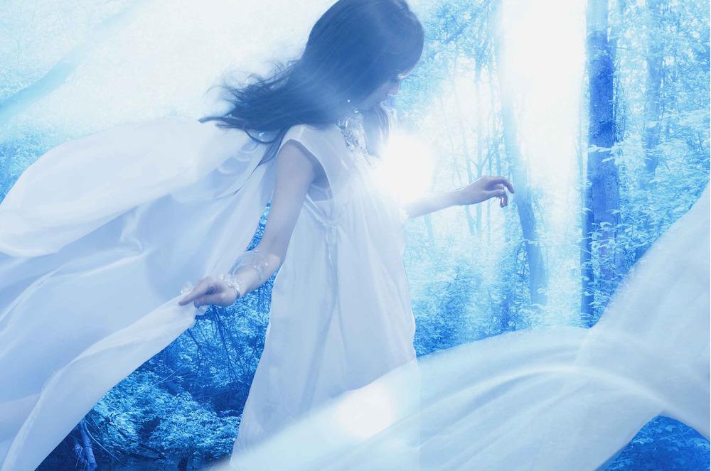 言葉 蓮花 【似葉又似花的石蓮花】永不凋謝的花朵~生命的無畏 @
