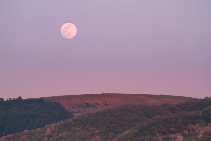 空 の 目指し 今日 を は 遥か た 月